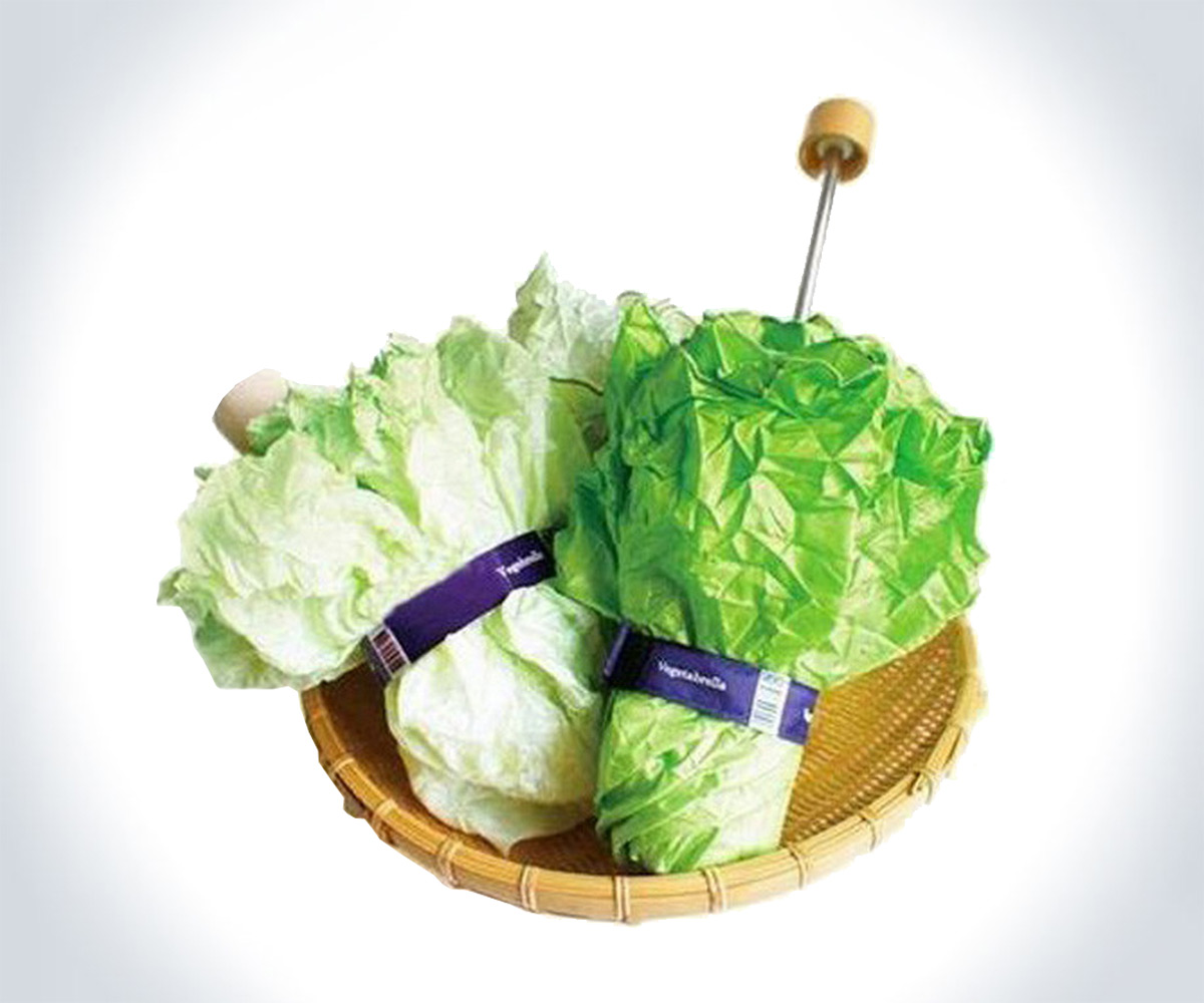 vegetabrella-lettuce-umbrella-23650